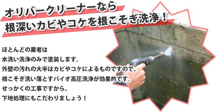 オリバークリーナーなら 根深いカビやコケを根こそぎ洗浄!
